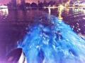 292_ROB7661-lichtgevend-water-200616-46x31