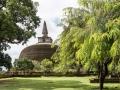 306_ROB8757 stupa 46x31